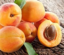 Экстракт абрикоса